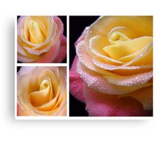 Yellow - Pink Rose. Collage. Canvas Print