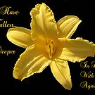 Yellow Lilly Flower  by Dawnsuzanne
