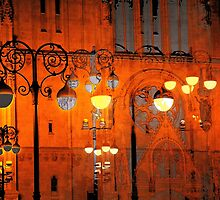 The Essence of Croatia - Zagreb Night Lights by Igor Shrayer