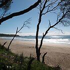 Coffs Harbour Beach by katkeldeen