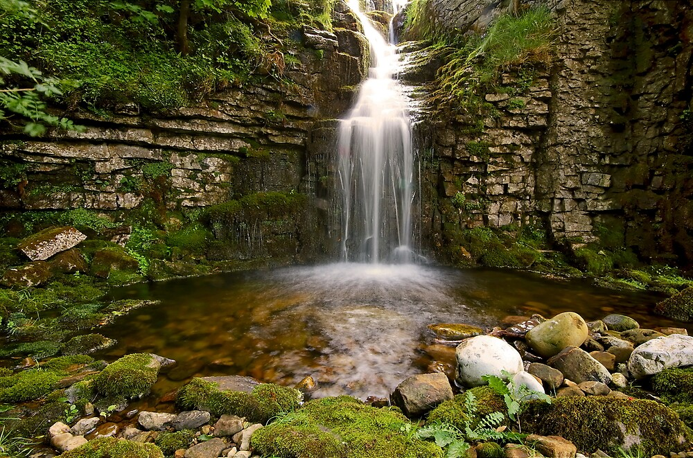 Buckden Beck Falls by Andrew Leighton