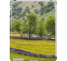 Yorkshire Dales Landscape Langstrothdale iPad Case/Skin