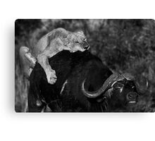 Survival of the Fittest II Canvas Print