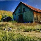 Weathered Barn by rok-e