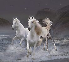 Wild horses on the beach by rok-e