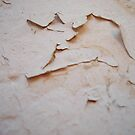 Peeling Paint (Wall) by Chanzz
