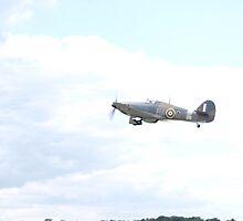 Hurricane - Hero of the Battle of Britain by Jamie McCaffery