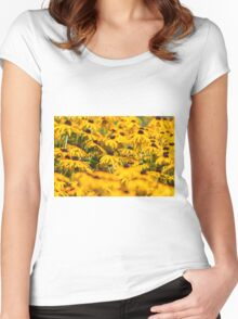 Daisy 5 Women's Fitted Scoop T-Shirt