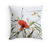 bluebottle and poppy blossoms Throw Pillow
