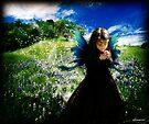 Field of Dreams by dimarie