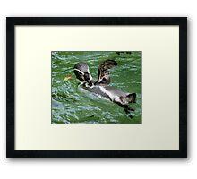 Penguin Wave Framed Print