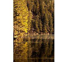 Golden Mood Photographic Print