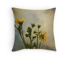 janet lee photography Throw Pillow
