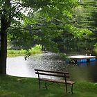 Serene Summer-Pond in Neshkoro  by Swan Diaz
