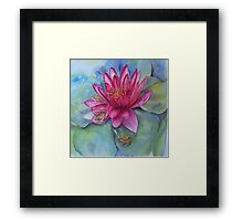 Water lily hide and seek Framed Print