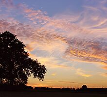 Central Bedfordshire Sunset by Roantrum