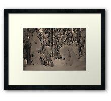 Dog Lake Snowshoeing 2 Framed Print