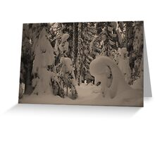 Dog Lake Snowshoeing 2 Greeting Card