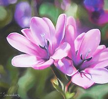Pink Flowers by Connie Sonnenberg