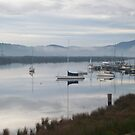 Reflections on a Mist Morning by Paul Campbell  Photography