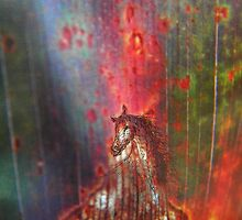 red horse - nature drawing - natural world - macro photo by alyona firth