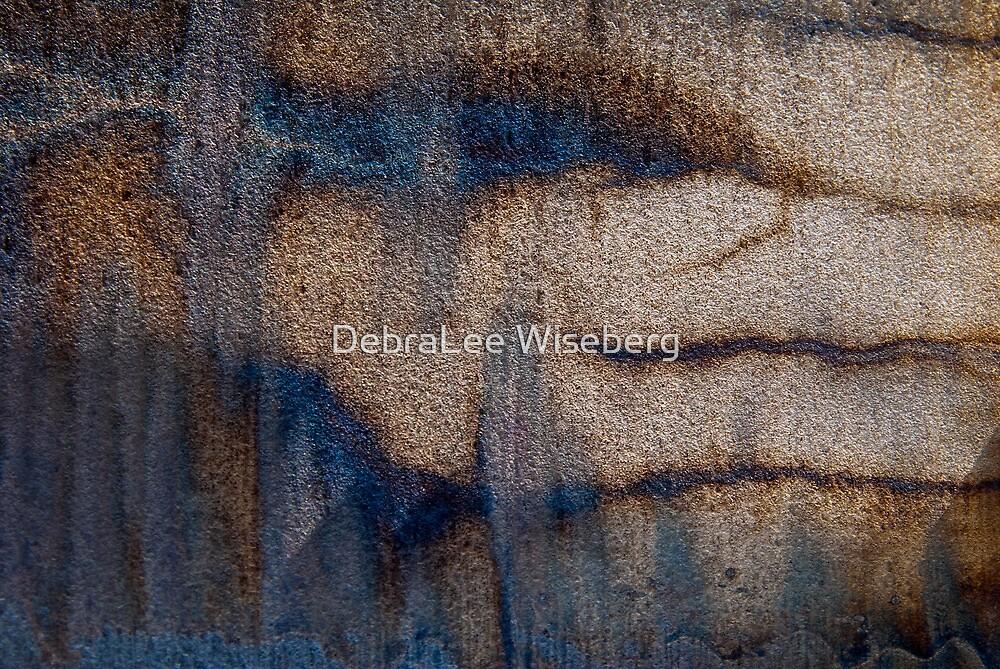 Slipping Through Ones Hands by DebraLee Wiseberg
