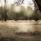 flood by Peta Hurley-Hill