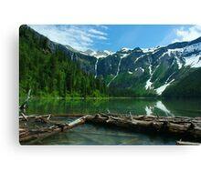 Glacier NP 2 Canvas Print