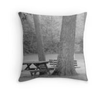turn of the century picnic Throw Pillow