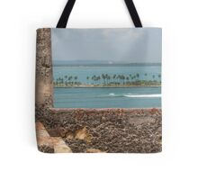 Peering from the Stairs Tote Bag
