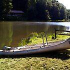 Lakeside Fun by vigor