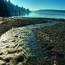 Hood Canal 1 by twokonings