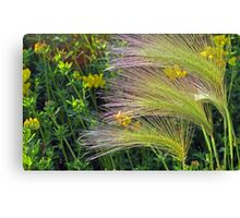 Blowin' In The Wind Canvas Print