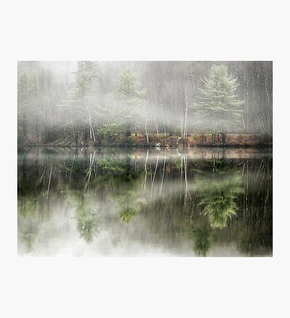 Foggy Reflections Photographic Print