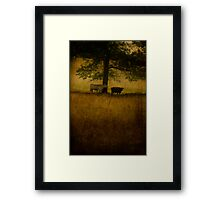 Last Light Framed Print