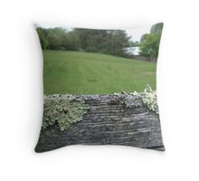 Good fences make good neighbors Throw Pillow