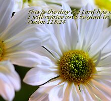 Glenda's Daisies 2 by Gary Boudreau