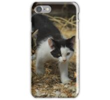 Two Kittens iPhone Case/Skin