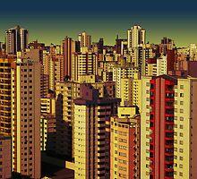 Goiania cityscape by Zack Nichols