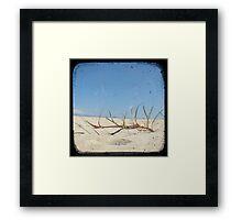 Grassy Dunes - TTV #4 Framed Print