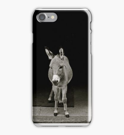 Farmyard Guard iPhone Case/Skin