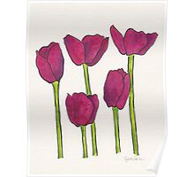 Five Tulips (purple) Poster