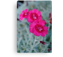 Jumping Flower Canvas Print
