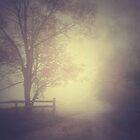Autumn in the mist.. by JOSEPHMAZZUCCO