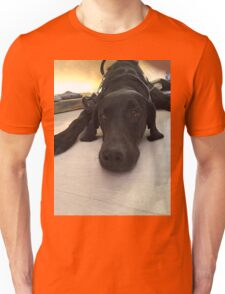the cute dog Unisex T-Shirt