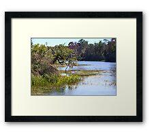 Florida's Rainbow River Framed Print
