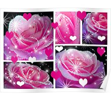 Pink Roses & Collage. Poster
