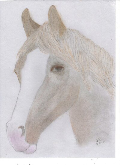 Portrait of a Horse for JD by LadyE