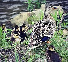 Momma and babies by USrealmArt