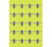 A Swarm of Wasps  Photographic Print
